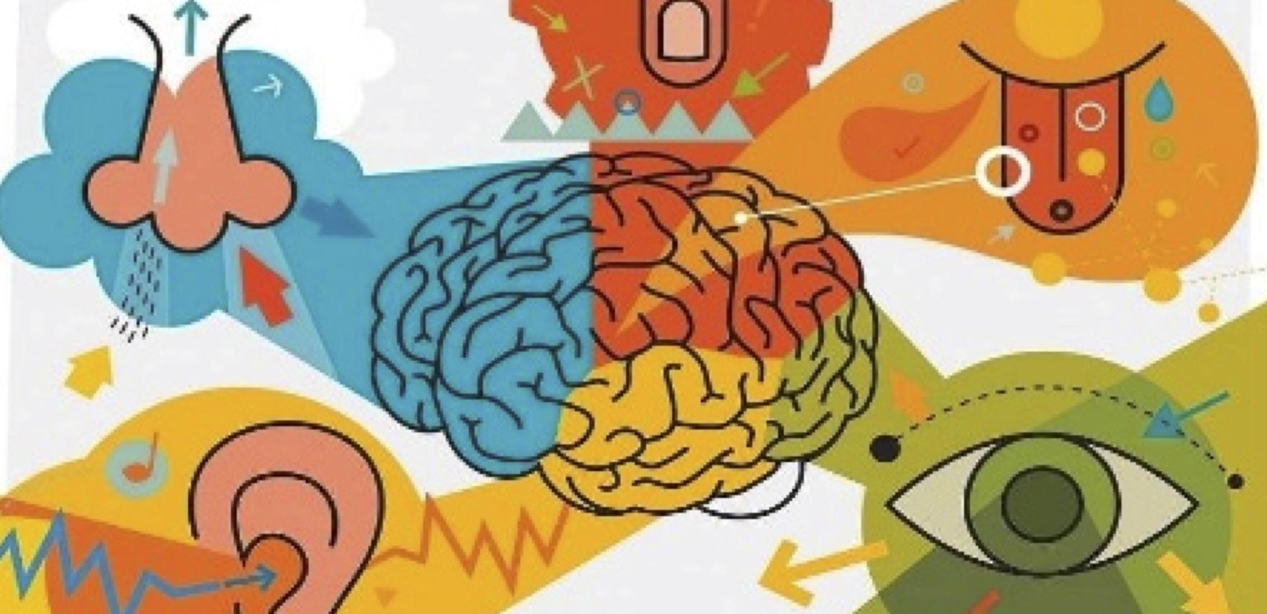 El marketing sensorial